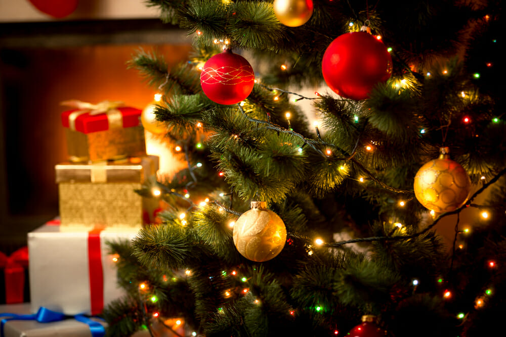 christmas, tree, fairy, lights, fairy lights, twinkle, sparkle, light, led, festive, xmas, santa, father christmas, pine, evergreen, baubles, tinsel, decoration, photography, photographing fairy lights, photo fairy light, photo tree, photo xmas, opening presents, kids, children christmas picture, turkey, family, festive times, fairy lighting, decorating christmas tree, iphotography, iphotographycourse, iphoto, learn photography, slow shutter speed, wide aperture, f/4, f4,f16,f11,f5.6, 1/60th, flash, tripod, composition, canon, nikon, dslr, camera, sony, fuji, pentax, how to photography, how to become a pro photographer, learn photography, online learning cheap, cheap learning, cheap photography, online course, elearning, distance learning, lens, slt, mirrorless, compact, camera, slr, macro lens, wide lens, zoom lens, camera flash, depth of field, motion blur