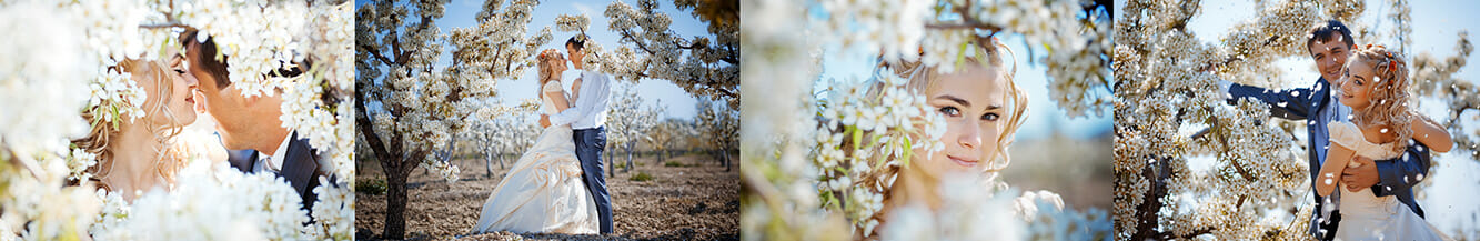 wedding photography tips bride groom pictures posing marriage flowers bloom bokeh trees white blue